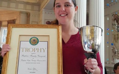 """Boplaas """"Best SA Port"""" at the Old Mutual Trophy Wine Show"""