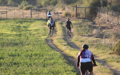 Meiringspoort MTB and Trail run