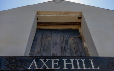 Axe Hill invest in vines