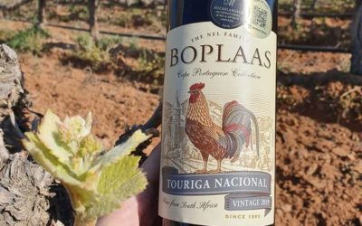 Boplaas Touriga Nacional in the limelight