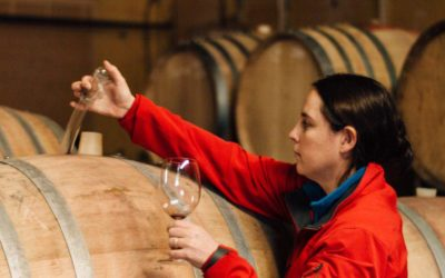 Boplaas Port re-affirmed as age-able wines